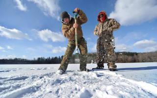 Снасть для ловли окуня зимой на блесну