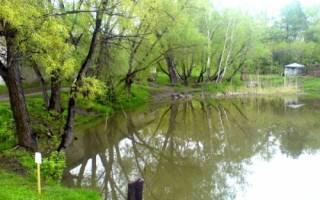Отзывы о рыбалке в омске