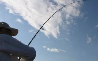 Как правильно подсекать рыбу видео