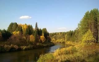 Осенняя рыбалка на щуку на спиннинг видео