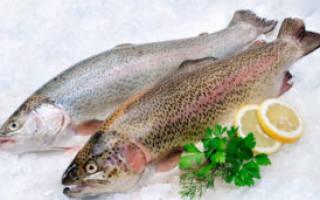 Чем богата рыба форель