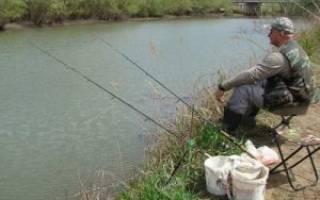 Рыбалка в черепово отзывы