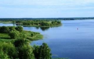 Где ловится рыба в ярославской области