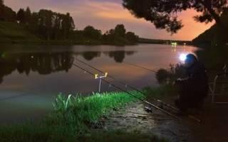 Лучший фонарь для зимней рыбалки