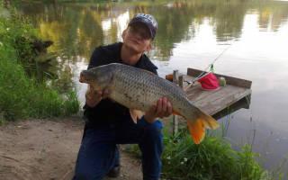 Рыбалка на реке химки