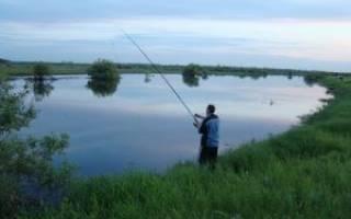 Платная рыбалка в селково сергиево посадский район