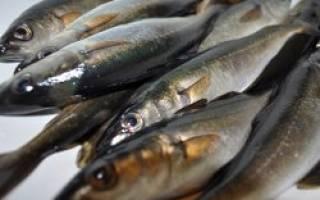 Сварить рыбу в воде