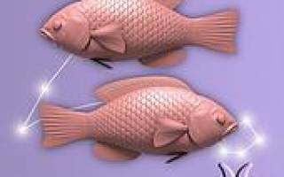 Рыбы знак зодиака в постели