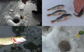 Секреты рыбака снасти