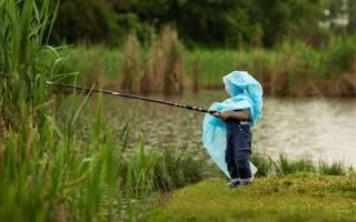 Клюет рыба в пасмурную погоду