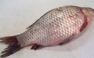 Как рыбу сделать без костей