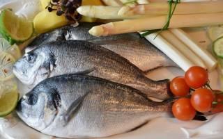Можно ли есть рыбу при диетическом питании