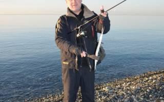 Поймать рыбу ганжаварс
