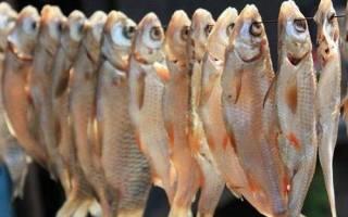 Как вкусно засушить рыбу в домашних условиях
