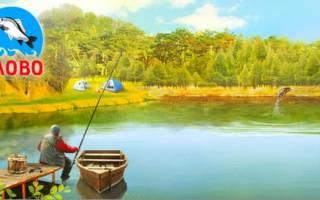 Воля платная рыбалка
