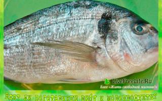 Вегетарианство рыба вместо мяса