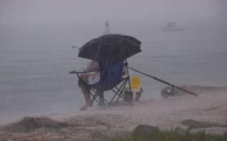Ловится ли жерех в дождь