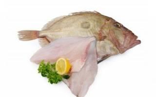 Энотера рыба и морепродукты