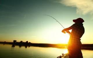 Платная рыбалка в вельяминово домодедовский район