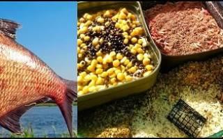 Рыболовные прикормки на леща