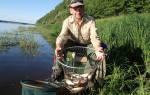 Ловля на горох на реке весной
