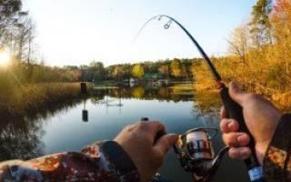 Рыбалка в астрахани сегодня