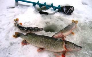 Снасточка для зимней ловли щуки