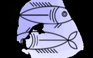 Мир рыб википедия