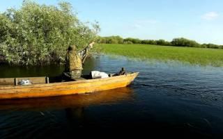 Лучшие места для рыбалки на припяти