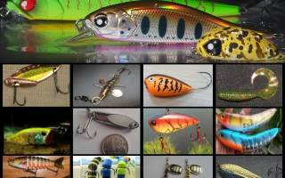 Виды приманок для ловли щуки на спиннинг