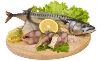 Копчение рыбы в коптильне с гидрозатвором