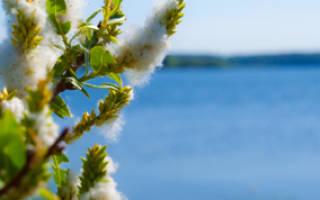 Река озерна места для рыбалки отзывы