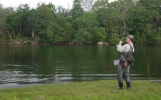 Рыбалка в Курганской области: места и особенности