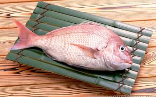 «Золотая рыбка морской окунь: его польза и вред для человека