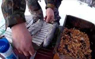 Как сделать красную рыбу холодного копчения