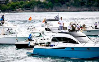 Какие рыбы водятся в адриатическом море черногории