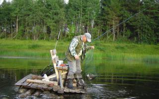 Рыбалка на реке сеуль в августе