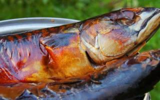 Коптилка для рыбы своими руками чертежи