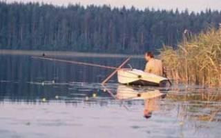 Прогноз ловли рыбы на неделю в сургуте