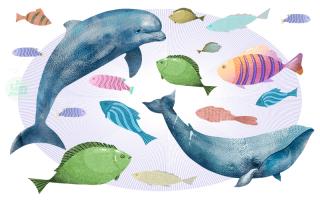 Загадки для дошкольников по теме рыбы
