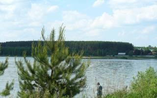 Платная рыбалка в нижегородской области рыбхоз заря
