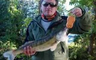 Сапоги для зимней рыбалки эва отзывы