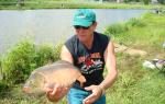 Продажа бизнеса платная рыбалка