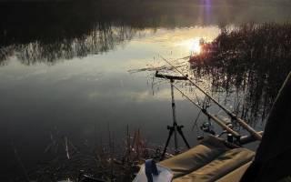 Виды ловли рыбы на реке