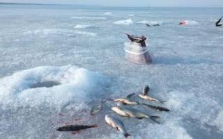 Бур для зимней рыбалки алиэкспресс