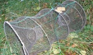 Из чего сделать мордушку для ловли рыбы
