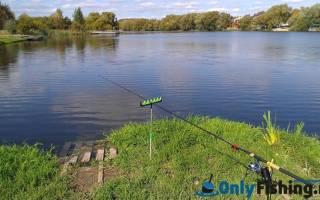Сосенки рыбалка фото
