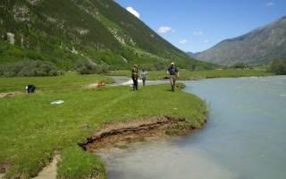 Ловля толстолоба на реке кубань