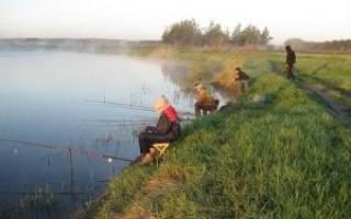 Река люторка чеховский район рыбалка