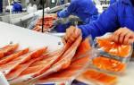 Переработка рыбы и морепродуктов работа
